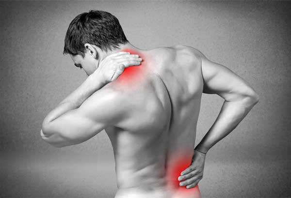 Highlighed muscle pain locations